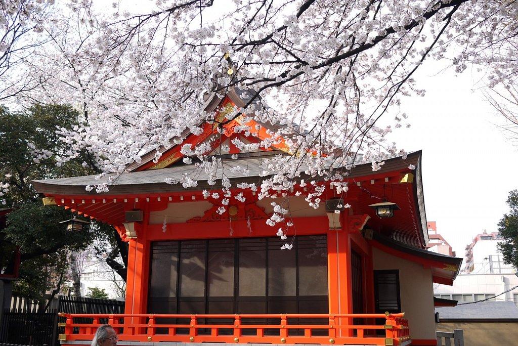 Tokyo school photos
