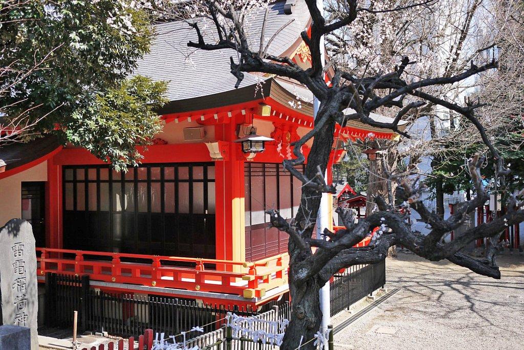 tokyo-shinjuku-city-hanazonoshrine5.JPG